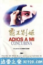 霸王别姬 (1993)