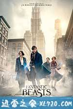 神奇动物在哪里 Fantastic Beasts and Where to Find Them (2016)