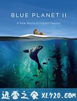 蓝色星球2 Blue Planet II (2017)