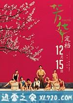 芳华 (2017)