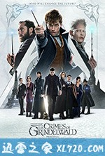 神奇动物:格林德沃之罪 Fantastic Beasts: The Crimes of Grindelwald (2018)