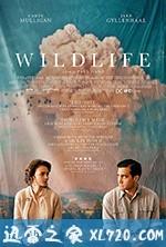 [2018圣丹斯电影节最新保罗·达诺剧情][狂野生活 Wildlife ][高清资源][迅雷下载]