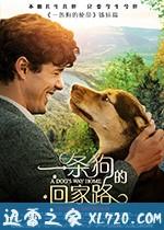 [2019国产最新查尔斯·马丁·史密斯冒险][一条狗的回家路 A Dog's Way Home ][高清资源][迅雷下载]