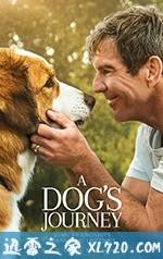 一条狗的使命2 A Dog's Journey (2019)