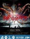 追踪章鱼保罗 (2010)