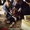 八月:奥色治郡 August: Osage County (2013)