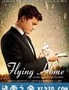 飞归故乡 Flying Home (2014)