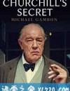 丘吉尔的秘密 Churchill's Secret (2016)
