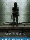 摩根 Morgan (2016)