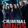 犯罪心理 第十三季 Criminal Minds Season 13 (2017)