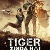 老虎是活的 Tiger Zinda Hai (2017)