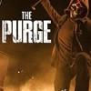人类清除计划 The Purge (2018)