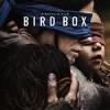 蒙上你的眼 Bird Box (2018)