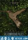 蜂鸟计划 The Hummingbird Project (2019)