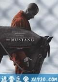 野马 The Mustang (2019)