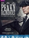浴血黑帮 第五季 Peaky Blinders Season 5 (2019)