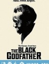 黑人商业教父 The Black Godfather (2019)