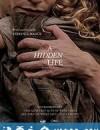 隐秘的生活 A Hidden Life (2019)