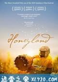 蜂蜜之地 Медена земја (2019)