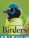 观鸟者 Birders (2019)