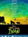 独一无二的伊万 The One and Only Ivan (2020)