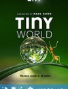小小世界 Tiny World (2020)