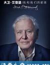 大卫·爱登堡:地球上的一段生命旅程 David Attenborough: A Life on Our Planet (2020)
