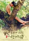 2019年国产8.0分喜剧儿童片《树上有个好地方》BD国语中字